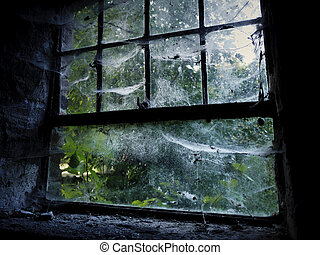 Creepy old window with spider webs - Old creepy window...