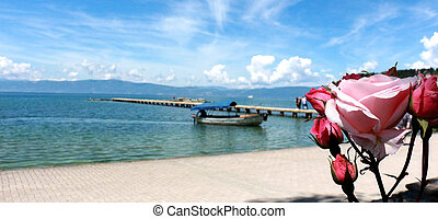 Red rose in front of wiev of a Lake Ohrid , Macedonia -...