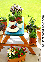 Terrace or roof gardening
