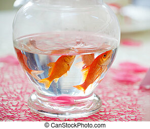 Goldfish in ampule used as centerpieces in a party