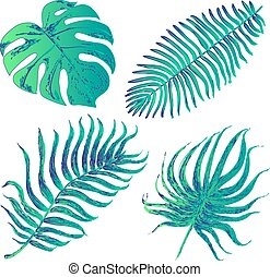 Vector set with tropical exotic lea - Set of graphic...