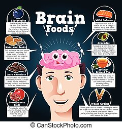 Brain Foods - A vector illustration of brain foods...
