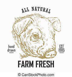 Hand drawn food logo. Engraved pig head isolated on white...
