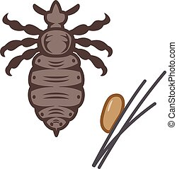 Adults and eggs of lice - Vector illustration.Original...