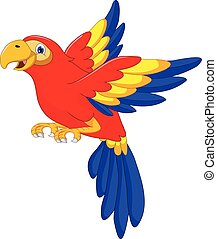 macaw bird cartoon flying