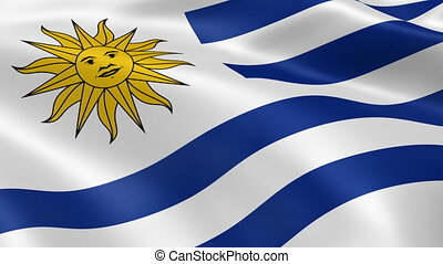Uruguayan flag in the wind. Part of a series.