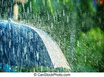 Summer Rain Storm Under Umbrella. Summer Rainy Weather