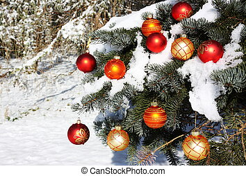 Natural Christmas Tree in Snow - A natural conifer Christmas...