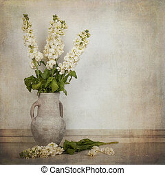 Cream white stock flowers in a cream vase in a vintage...