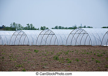 group of new greenhouses that serv