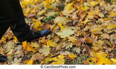 Man stepping on dead yellow leaves, autumn season colors in...