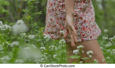 girl touching flowers visible hands closeup - touching the...