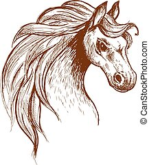 Wild feral horse in aggressive posture sketch - Angry brumby...