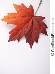 Happy Canada Day Maple Leaf - Happy Canada Day symbolic...