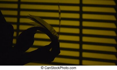 Turning the pages of a book. Silhouette. Slow motion. Close...