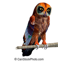 fantasy owl with rainbow colors. 3D rendering with clipping path and shadow over white