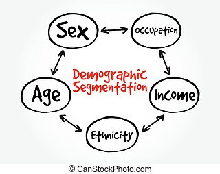 Demographic segmentation mind map flowchart social business...