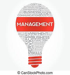 Management bulb word cloud, business concept