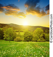 Spring mountain landscape in National park Sumava at sunset...