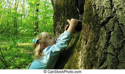 Girl on tree on nature - Little girl climbs on tree