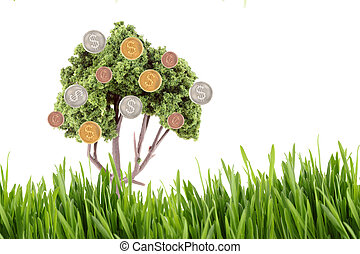 money growing on tree with grass - small miniature tree...