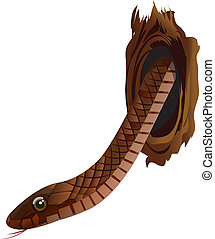 Snake	 - Illustration of a snake in the hole of tree