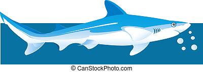 Shark - Illustration of a shark underwater