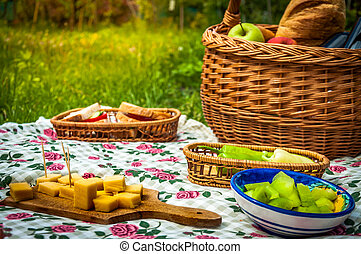 picnic scene - Picnic in the parc