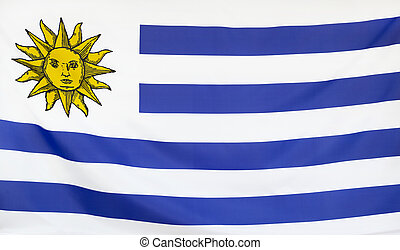 Uruguay Flag real fabric seamless close up with wind waves