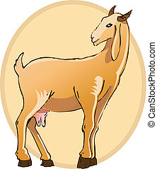 Goat - Illustration of a goat