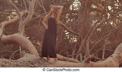 girl goes on the trunk of a large pine tree felled at sunset...