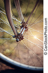 Forward wheel of the bicycle with bokeh - Forward wheel of...