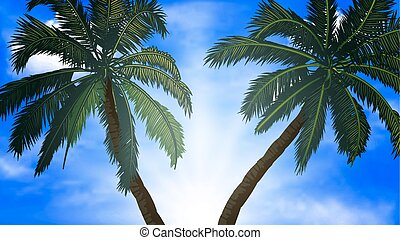 two palm trees on a background of b