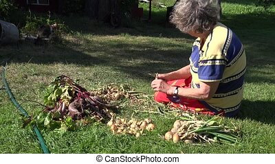 Old country woman sitting on grass process fresh onion heads...