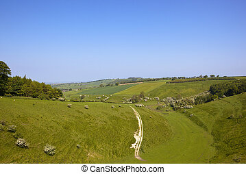 yorkshire wolds meadows - a hilly yorkshire wolds pasture...