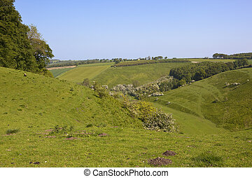 yorkshire wolds valley - a green yorkshire wolds valley with...