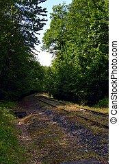 Abandoned railroad track.
