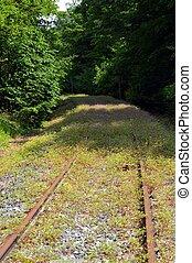 Abandoned railroad track. - Abandoned railroad track taking...