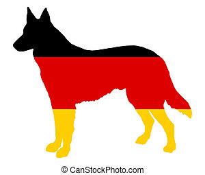 alemão, pastor