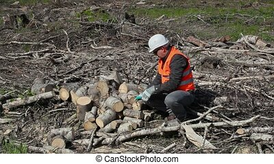 Lumberjack working in forest