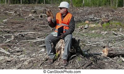 Environmental inspector check piece of wood in the destroyed...