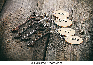 Wooden tags with domain names on old rusty keys, on wooden...