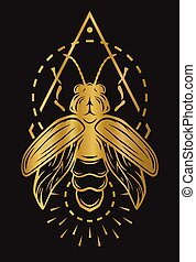 Firefly and geometric elements. Golden symbol on a dark...