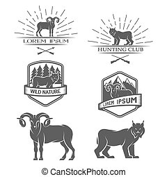 Sheep and lynx. Posters, labels, emblem. - Sheep and lynx...