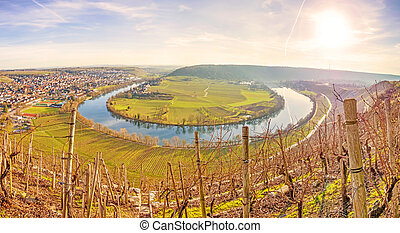 River Neckar - loop in Hessigheim - panorama - Neckar loop...