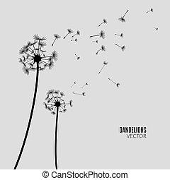 Vector Dandelion silhouette. Flying dandelion buds black on gray.