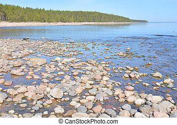 Ladoga lake at morning - Ladoga lake at sunny morning, the...