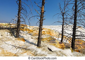 Yellowstone National Park - mammoth Terraces in Yellowstone...