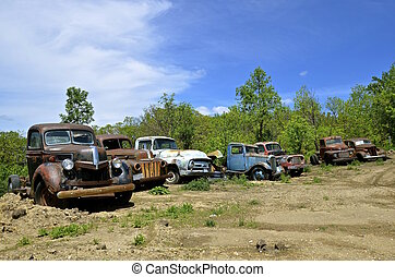 Row of old pickups in various stages of disrepair