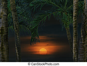 Sunset Tropical Landscape Scene